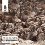 025 - Anchorsong